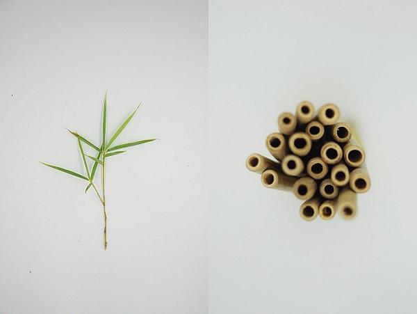 Tonkin Art - Công ty sản xuất ống hút tre uy tín chất lượng tại Hà Nội