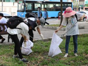thu gom rác, chung tay loại bỏ rác thải nhựa
