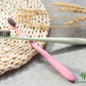 bàn chải lúa mạch, dụng cụ lúa mạch, dụng cụ thân thiện với môi tường