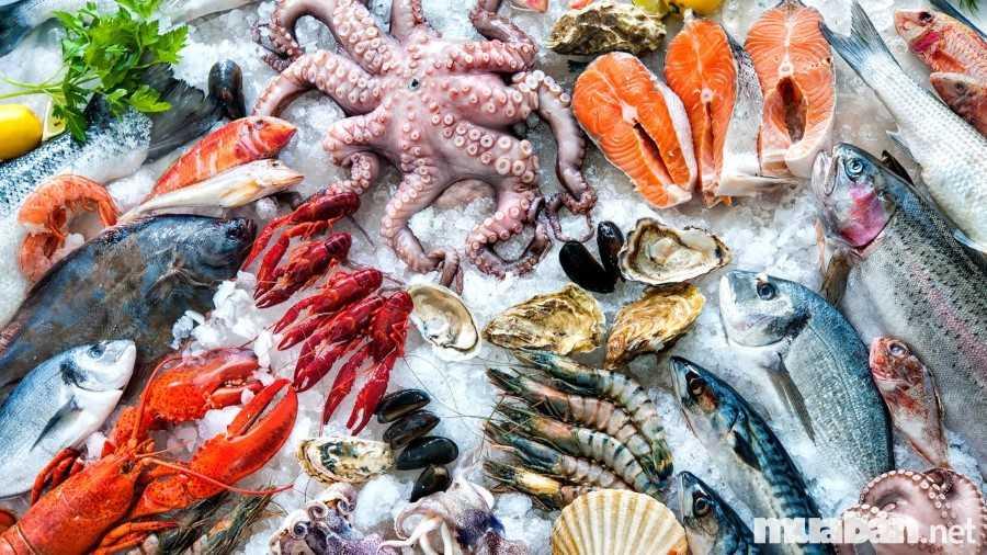 hạt vi nhựa, hạt vi nhựa trong thực phẩm, microplastic, hạt vi nhựa vào cơ thể người