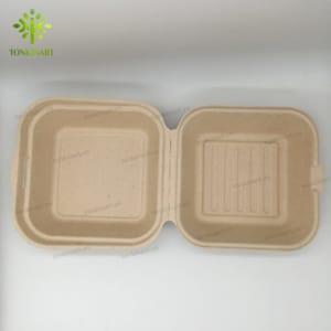 hộp cơm bột mía phân hủy sinh học